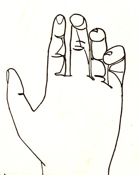 Contour Line Drawing Books : Art activities keller s site